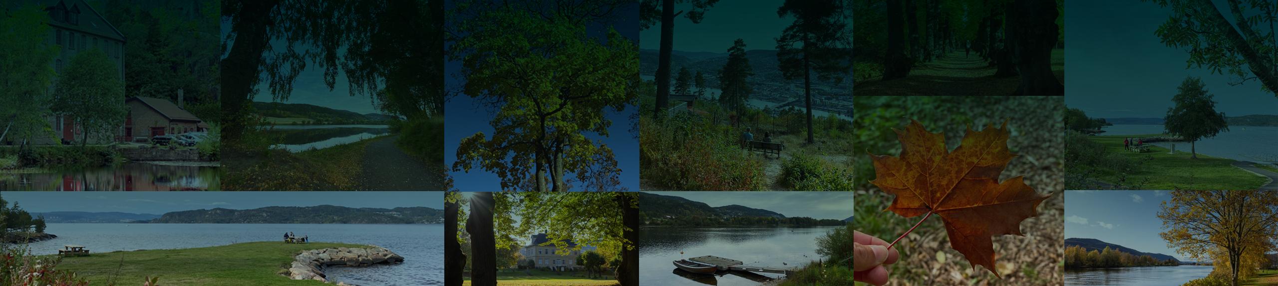 Hva Kan Vi Hjelpe Deg Med Drammen Kommune